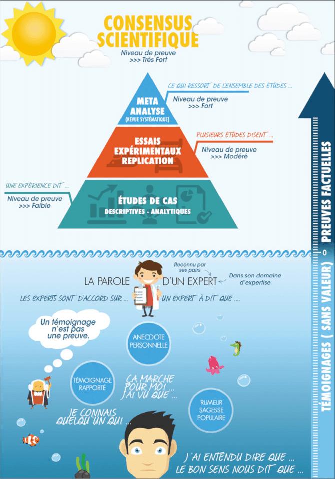 Pyramide niveau de preuve