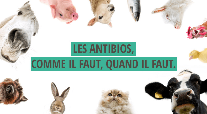 alternative aux antibiotiques